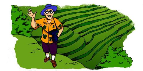Cartoon: Tourist at the Banaue Rice Terraces